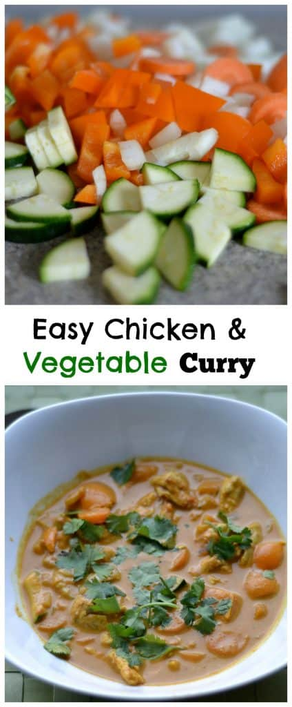 Chicken & Vegetable Curry Pin