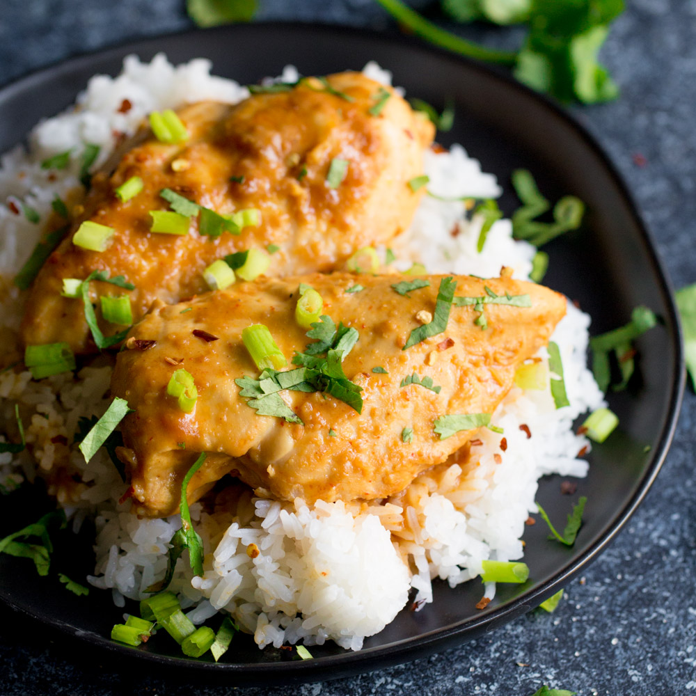 Chicken breast covered in peanut sauce, cilantro, and green onion on top of a bed of rice in a black bowl.
