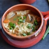 Hot and Sour Potsticker Soup