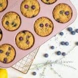 Lavender Lemon Blueberry Muffins (Paleo)